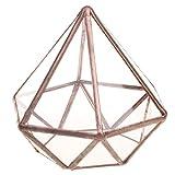 FLAMEER Mini Geometrisches Glas Terrarium Schmuckschatulle Sukkulente Pflanzgefäß als Haus Dekoration und Prop - L