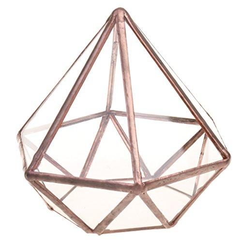 MagiDeal Caja en Forma de Diamante de Vidrio Como Maceta para Plantas