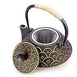 HwaGui Gusseisen Teekanne Innere Wand Emaille Teekanne Mit Edelstahl Filter für Tee Liebhaber als Geschenk, Chinesischer Gesunder Kessel 800ml / 25oz