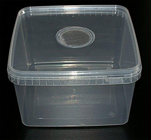 Insect Box 3,1L Zuchtbehälter Drosophilazucht, Fruchtfliegen, Spinnenzucht mit Gaze Deckel, Heimchendosen