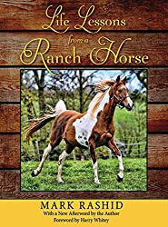 Life Lessons From A Ranch Horse,