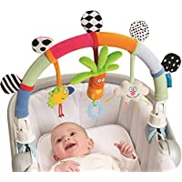 Taf Toys 11675 - Arco de carrito arcoíris