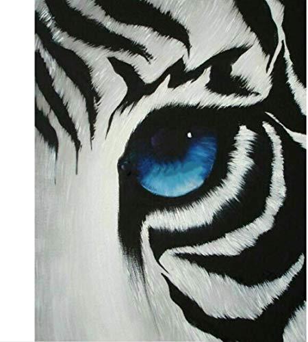JJAYK Malen Nach Zahlen für Erwachsene und Kinder Tier Tigerauge DIY Ölgemälde Vorgedruckt Leinwand-Ölgemälde Kits für Home Haus Dekor mit -16x20 Inch Mit Holzrahmen