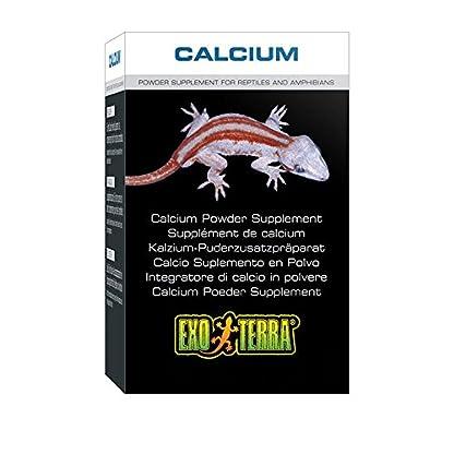 Exo Terra Reptile Calcium 40g 1