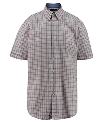 Jacques Britt Herren Business Custom Fit Kurzarm Button-Down-Kragen Bügelleicht (Button-down-brown Bekleidung)