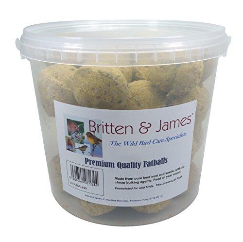 Britten & James 40 Bolitas de Grasa de Primera Calidad Conveniente Tina con Cierre hermético Que no se ensucia. Uno de los Alimentos energéticos más concentrados y de fácil metabolización.