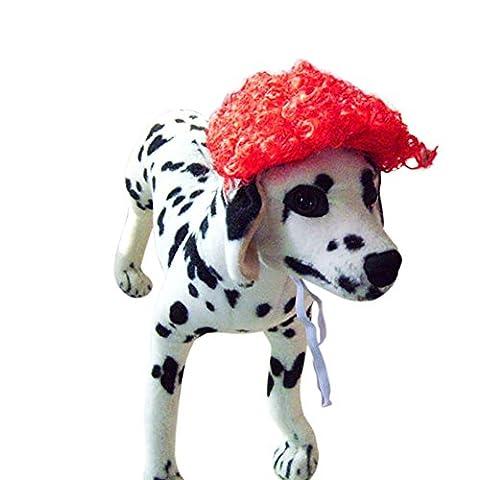Costumes Bouclés Noir Costume Wig - KAYI Dog Wig Costume Pet Perruque bouclée