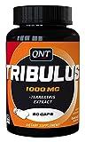 QNT Tribulus Terrestris - 500 mg