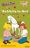 Bibi & Tina - Rehkitz in Not: Erstlesebuch