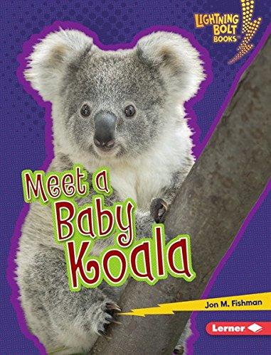 Epub Gratis Meet a Baby Koala (Lightning Bolt Books ® — Baby Australian Animals)