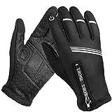 Winterhandschuhe, Wasserdicht Thermo Handschuhe Skihandschuhe für Herren mit Touchscreen-Fingerspitzen für Ski,Radfahren,Lauf und Arbeit (Schwarz, L)