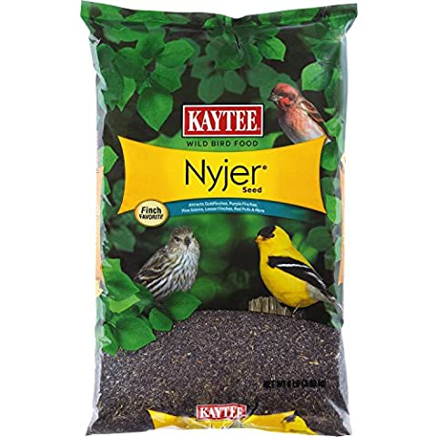 KAYTEE PRODUCTS INC. - Nyjer Thistle Bird Seed, 8-Lb. - Nyjer Seed