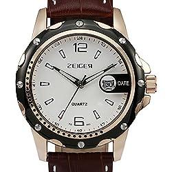 ZEIGER Herrenuhr Armbanduhr Braun Analog Quarz Herren Uhr Luxus Herrenuhr Datum W314