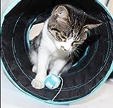 Prosper Pet Cat Tunnel chenci- klappbar 3Wege Play Spielzeug–Tube Fun für Kaninchen, Kätzchen, und Hunde - 5