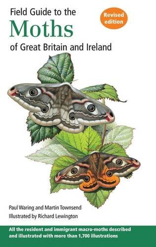 Field Guide to the Moths of Great Britain and Ireland by Paul Waring (2009-05-31)