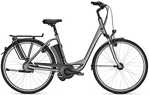 Raleigh Dover 330 14.5Ah Elektro Fahrrad/City eBike 2017