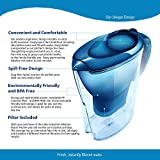 The Alkaline Water Pitcher - 2.5 Liters by Lake Industries