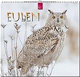 MF-Kalender EULEN 2019