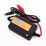 400Ah orange Intelligent Auto Pulse Batterie...