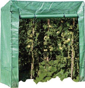 BREMA 40.122 Serre pour tomates 170 x 190 x 80 cm