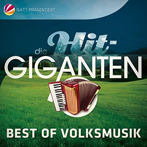 Die Hit Giganten Best Of Volksmusik