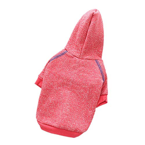 Jcloris Hundebekleidung Frühjahr Neue Hundebekleidung Pullover Lässig Kleiner Hund Teddy Baumwolle Vierbeinige Kleidung@Rot_XL