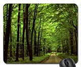 elegant greenforest way Mouse Pad, Mousepad (Forests Mouse Pad)