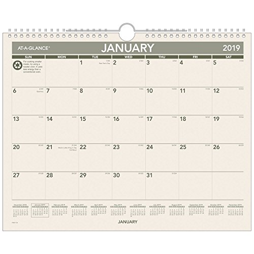 Einen Blick Monatliche Wandkalender, Recycling, Januar 2019-Dezember 2019, 14-7/20,3cm X 11-7/20,3cm (PMG7728) (Auf Einen Blick Monatliche Kalender)
