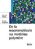 De la macromolécule au matériau polymère - Synthèse et propriétés des chaînes