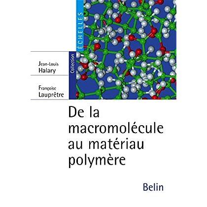 De la macromolécule au matériau polymère : Synthèse et propriétés des chaînes