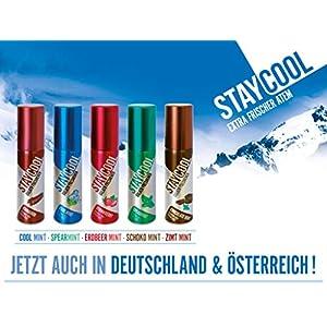 3x 20mlStay Cool Extra Frischer Atem Spray. Geschmacksrichtung: Zimt Mint