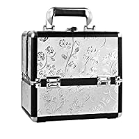 HST Small Professional Beauty Box Vanity Case