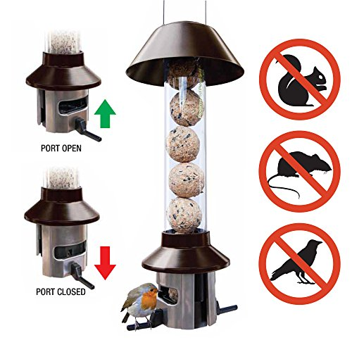 Squirrel Proof Wild Bird Feeder–roamwild pestoff