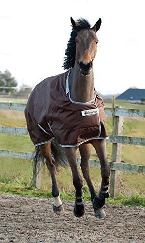 Bucas Pferdedecke Smartex Rain Turnout 145 cm Chocolate