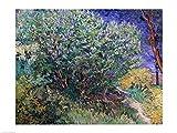 Vincent Van Gogh – Fliederbusch Kunstdruck (60,96 x 45,72 cm)