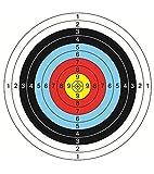 10 Piezas Dianas de Papel de Arco para Flecha, 60*60cm Accesorios de Tiro, Ideales para Hacer Juego y Practicar al Aire Libre