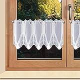 SeGaTeX home fashion Moderne Exclusive Scheibengardine Elegance Weiss aus Plauener Spitze in Zwei Höhen