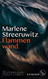 Flammenwand.: Roman mit Anmerkungen. von Marlene Streeruwitz