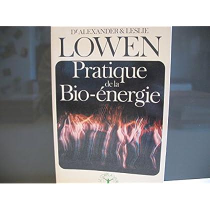 Pratique de la bio-énergie