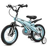 BAIJJ Magnesiumlegierung Kinderfahrrad, Junge 2-10 Jahre altes Kind Fahrrad, leicht und robust, mit Sicherheitsscheibenbremse (Farbe: blau, Größe: 12 Zoll)