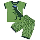Conjunto de Pijama para niños de Dinosaurio para Coches y niños Verde Verde 1-2 Años