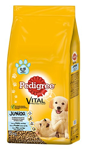 Pedigree Junior Medium Huhn und Reis