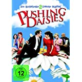 Pushing Daisies - Staffel 2