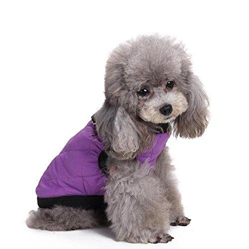 Mode Gesteppte Bomber Hundeweste mit dehnbarer Brust LNAG , (Mode Polizei Kostüm Hut)