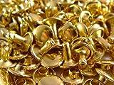 100 x 9mm Zwei Stücke Doppel Kappe Tubular Nieten für Leder Handarbeiten - Niete Deko für Handtaschen, Jeans, Riemen, Hundehalsband - Robust Verschluss zum Nähen und Bekleidung Reparatur - Gold