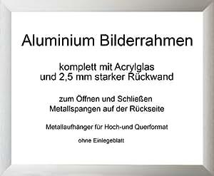 Toronto stabiler und moderner Aluminium Bilderrahmen 23x75 cm 75x23 cm silber Alu gebürstet mit Rückwand und Acrylglas