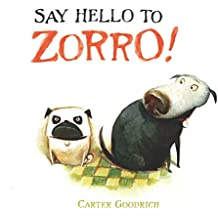 Say Hello to Zorro! (English Edition)