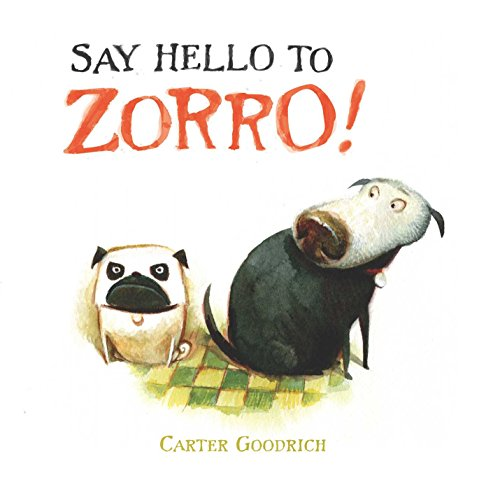 Say Hello to Zorro! (English Edition)