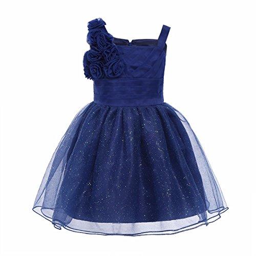 iiniim Baby Mädchen Kleid Festlich Kleid Prinzessin Blumenmädchenkleid Taufe Hochzeit Partykleid Festkleid Gr.50-92 Marine Blau 80-86/12-18 Monate