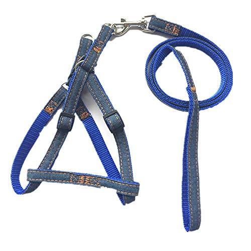 Seil Haustier Cowboy Brustgurt Pull Dog Chain Outdoor-Themen für kleine, mittlere und große Hunde (Color : Blue, Size : 1.0cm) ()